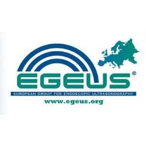 The New Egeus Blog!